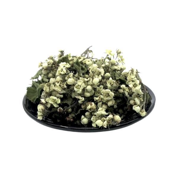 Vilkābeles ziedi